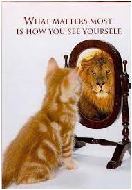 cat_lion